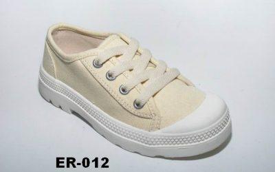 ER-012-1