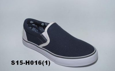 S15-H016(1)