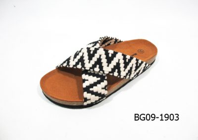 BG09-1903 - Black Arrow