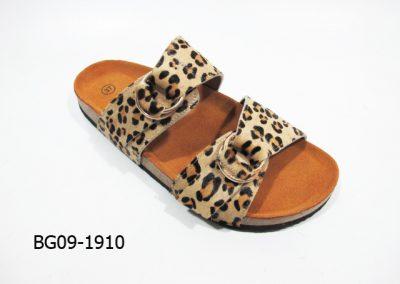 BG09-1910 - Leopard