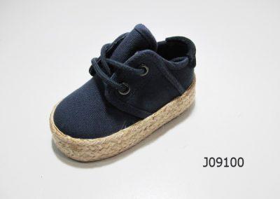 J09100