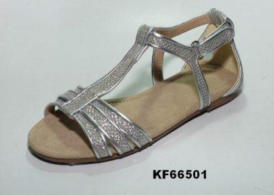 KF66501